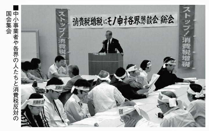 中小事業者や各界の人たちとの消費税反対の国会集会