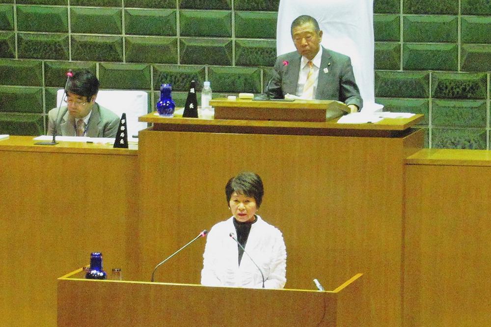2017(平成29)年6月15日 6月議会 一般質問